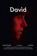 David (festivalový název)